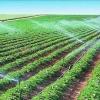 开平农场灌溉喷灌系统