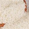 买买买:四川绵竹饲料厂求购大米碎米白米黄米进口米