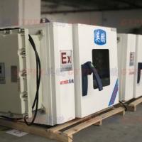 天津防爆干燥箱BYP-136GX,实验室防爆干燥箱