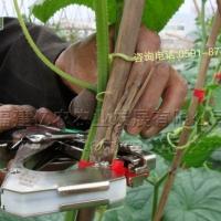 供应台湾SONO绑蔓机结束机葡萄绑枝器黄瓜绑蔓器番茄绑秧器