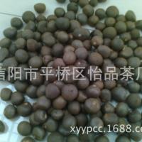 茶叶种子、茶树种子、绿茶种子、茶叶籽、信阳毛尖茶种子厂家供应