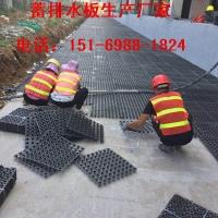 山东|泰安20高30高12高排水板厂家发货