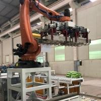 装箱码垛机器人-搬运装箱机器人码垛-工业机器人