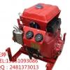 手抬机动消防泵,汽油机消防泵,移动式消防泵