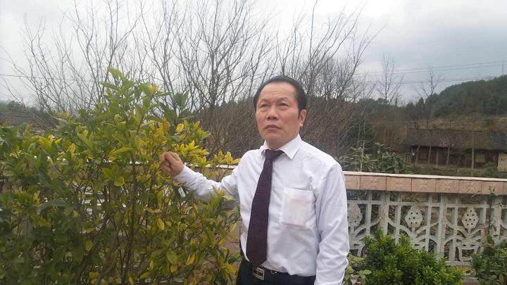著名收藏家田太华日获八项基尼斯纪录引爆文化传奇