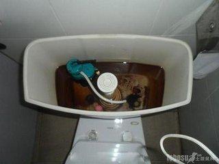西安马桶维修(座便器)洁具维修 装节水配件 G