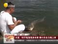 全球卫视:大连!60斤鲇鱼现身水库 俩小伙合力拽上岸 (14477播放)