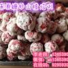 糖炒山楂制作方法加盟开店 去哪学习糖炒板栗做法