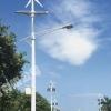山东德州节能太阳能路灯系统设计