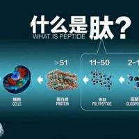 大豆小分子肽粉剂OEM贴牌,深  海鱼胶原低聚肽贴牌加工定制