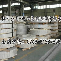 广东东莞sup12耐蚀性锰钢带