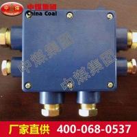 JHH型矿用本安电路用接线盒   矿用本安电路用接线盒规格