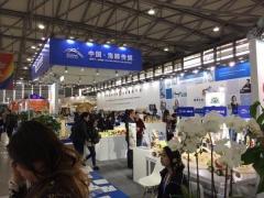 2019上海幼教展