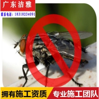 清远市白蚁防治除四害公司