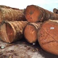 菠萝格防腐木平台规格、菠萝格防腐木平台长宽尺寸、菠萝格木材