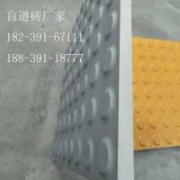 河南省郑州市防腐防滑耐碱盲道砖代理商
