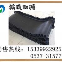 GLD800环形钢丝芯胶带 环形阻燃裙边带