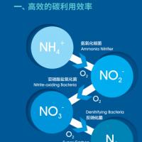 供应生物活性碳源