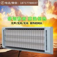 上海九源电热幕远红外辐射板 高温瑜伽加热设备电采暖器
