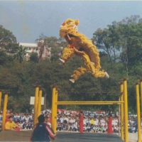 北京开业舞狮舞龙 北京舞龙舞狮 北京专业舞龙舞狮团