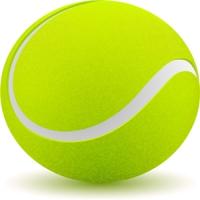 网球校园体育用品厂家