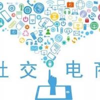2019社交电商系统及小程序展览会