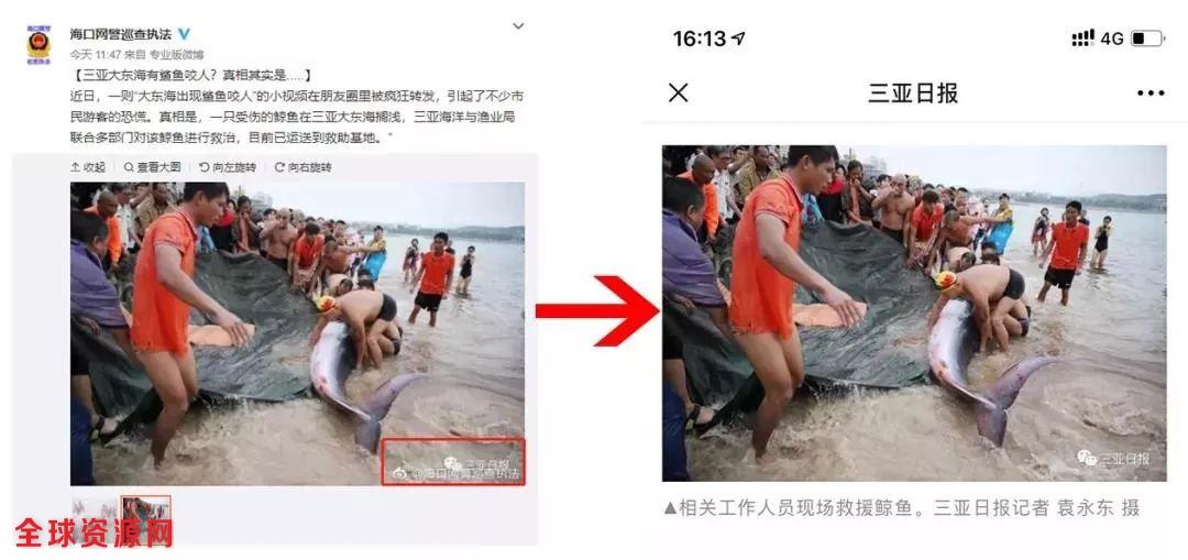 三亚鲨鱼咬人视频疯传引发游客恐慌 警方辟谣