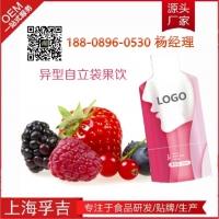 红石榴酵素饮品代加工果蔬酵素饮品加工委托生产批量全自动厂商