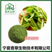绿茶粉批发价格 绿茶提取物19:1  抹茶粉厂家直销