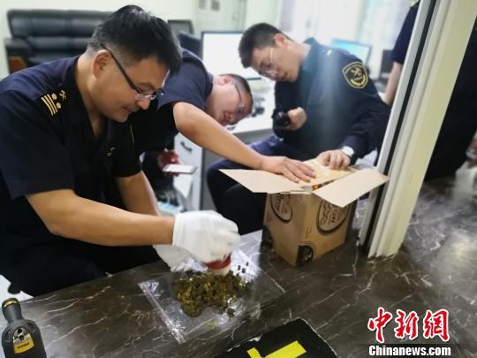 呼和浩特海关查获多起保健品夹藏大麻走私案均来自加拿大