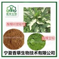 酸模叶粉 酸模提取物批发 皱叶酸模速溶粉厂家 酸不溜速溶粉