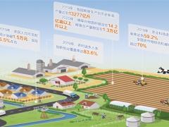 全球报道:中国乡村农业强劲 2019粮食生产站稳1.3万亿斤台阶