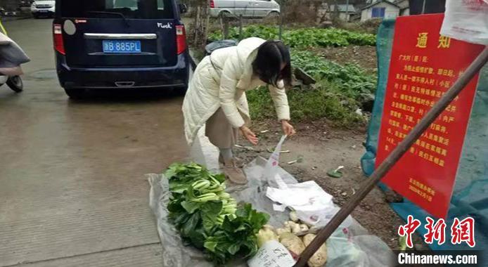 浙江八旬老夫妻将自种萝卜青菜放路边供路人免费自取