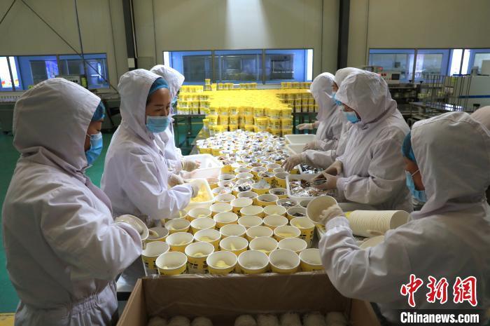 宁夏黄土地农业食品有限企业的生产车间里,工作人员正在包装粉丝。 杨迪 摄