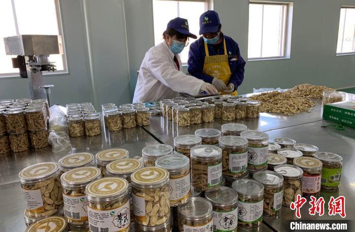 宁夏国隆药业工作车间内,工作人员正在进行中药材包装。 李佩珊 摄