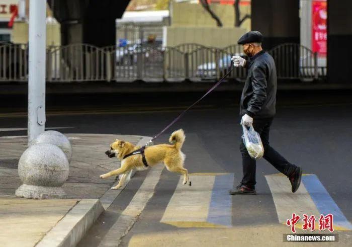 资料图 中新社记者 刘新 摄