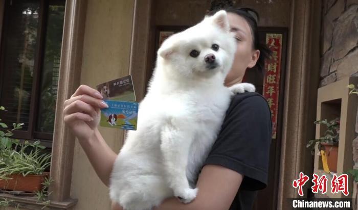 居民展示狗狗的证件 张践 摄