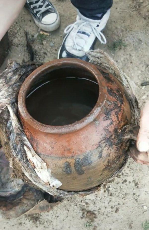 河南村民埋酒23年后酒没了发现红色长蛇 专业人士释疑